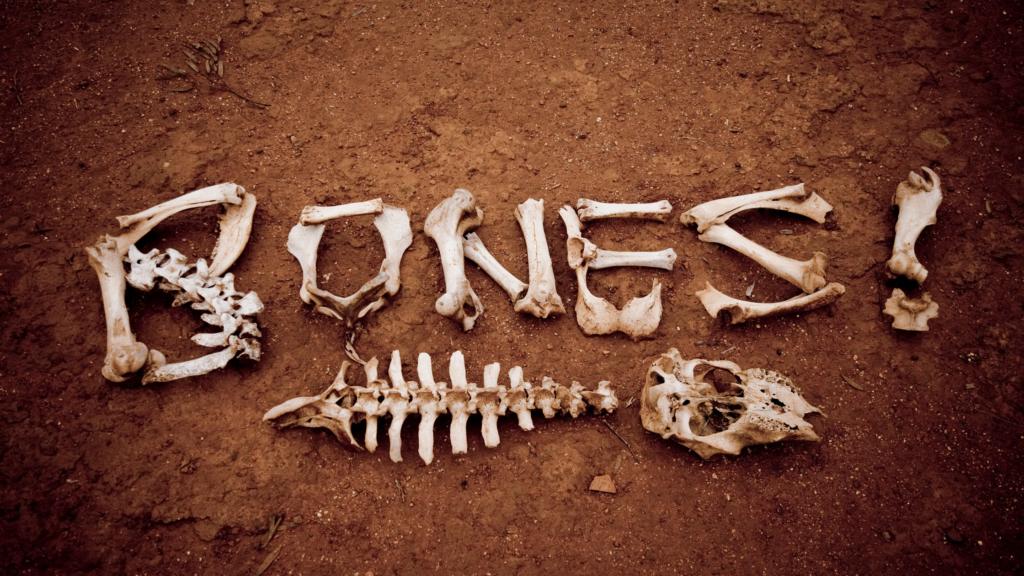 eating for healthy bones